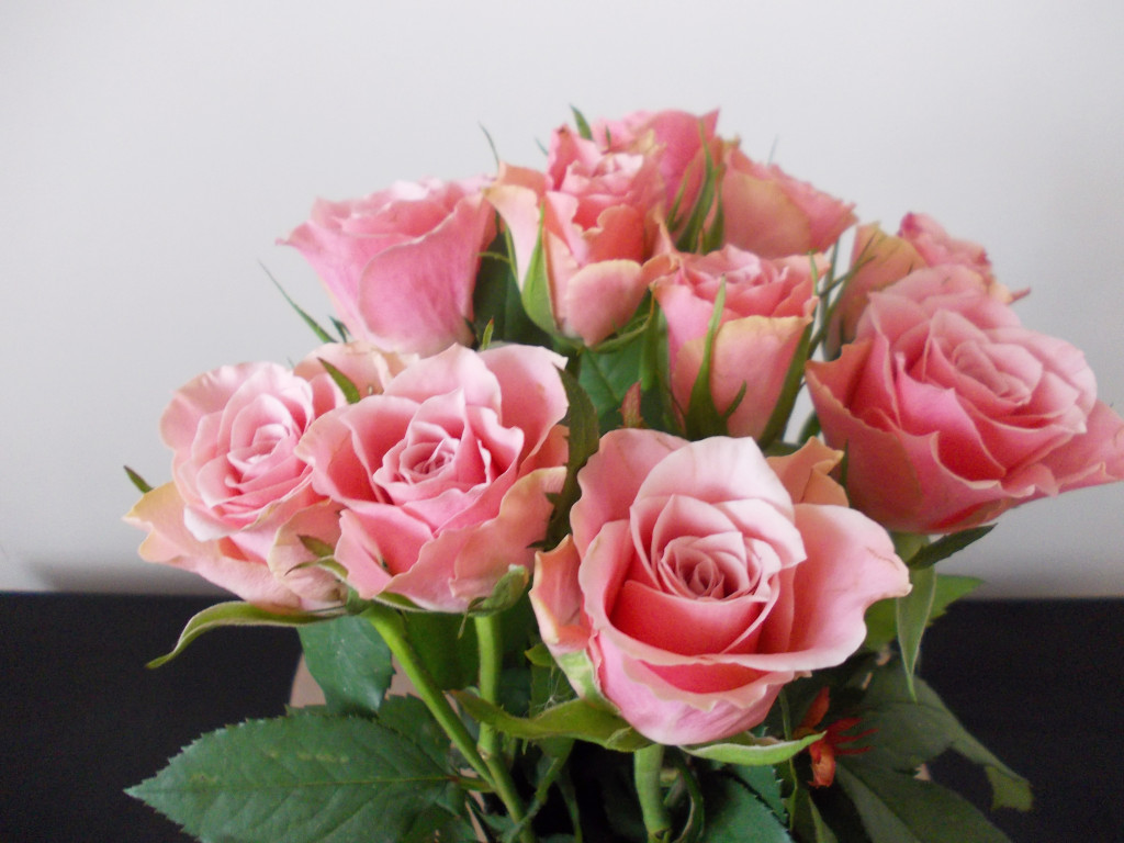 otwarcie bloga - kwiaty
