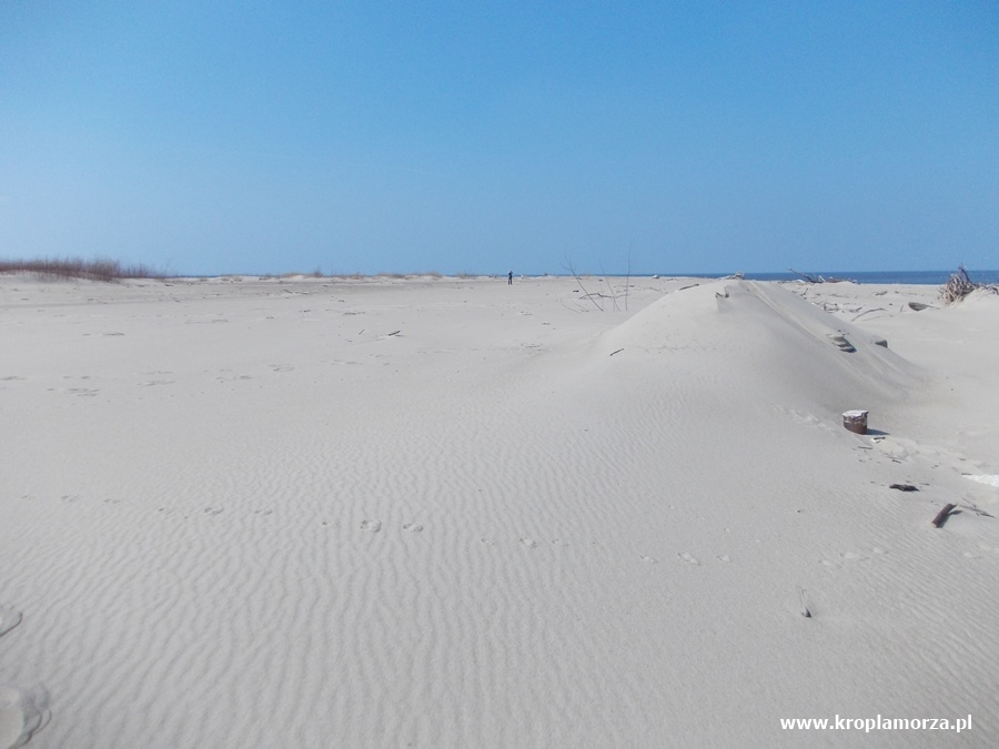 Rezerwat Mewia Łacha Gdańsk Świbno Sobieszewo pustynia