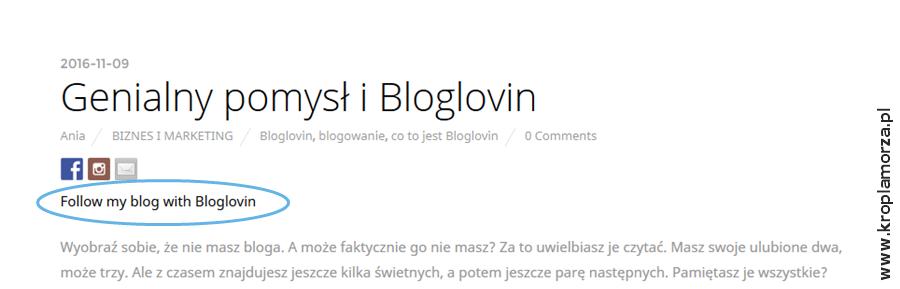 12_bloglovin_wpis-z-kodem
