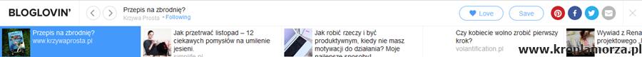 13_bloglovin_ramka