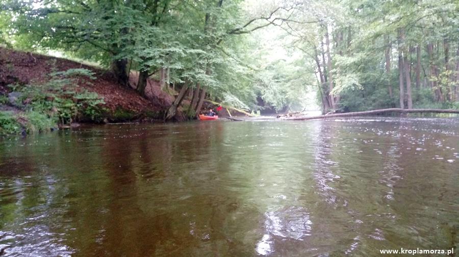 Spływ kajakowy rzeką Drawą