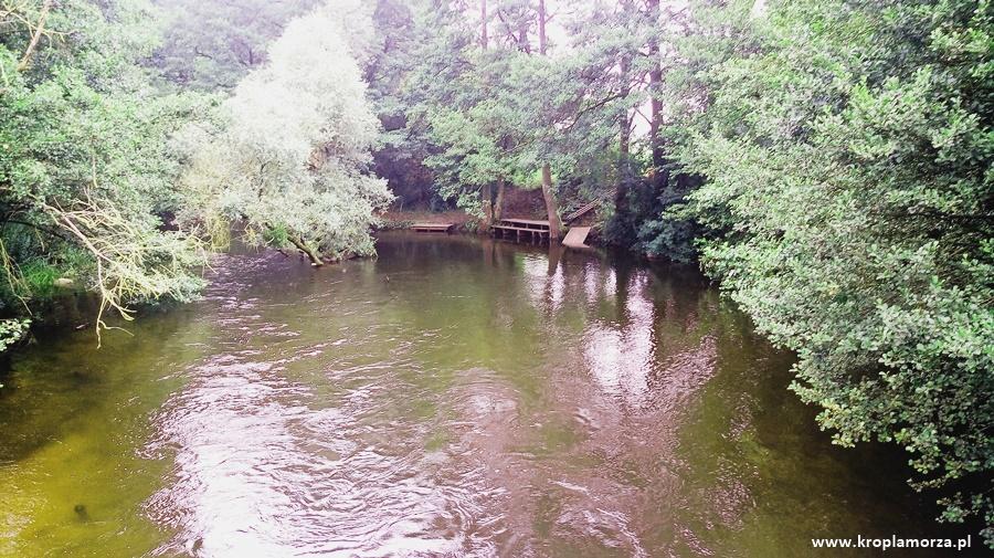 Spływ kajakowy Drawą