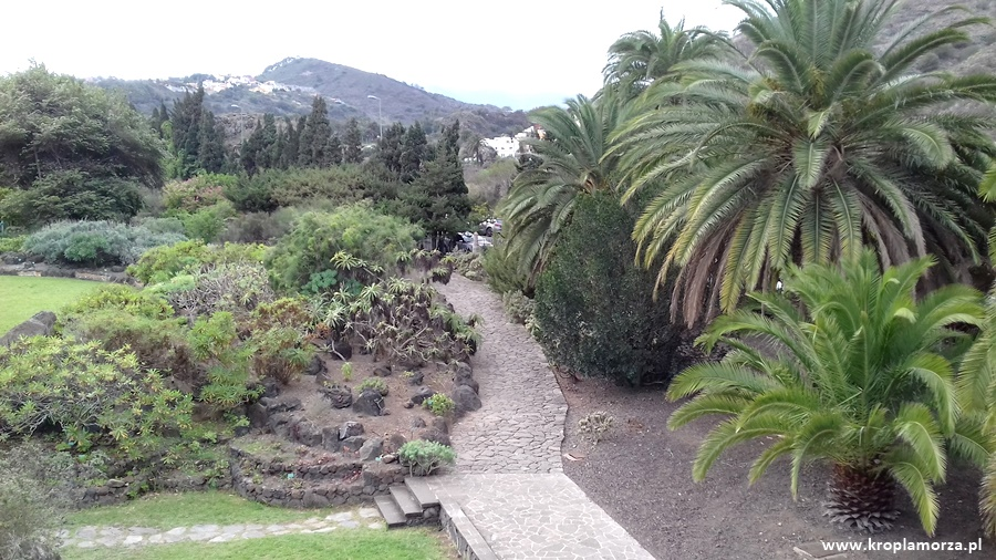 jardin-botanico-gran-canaria