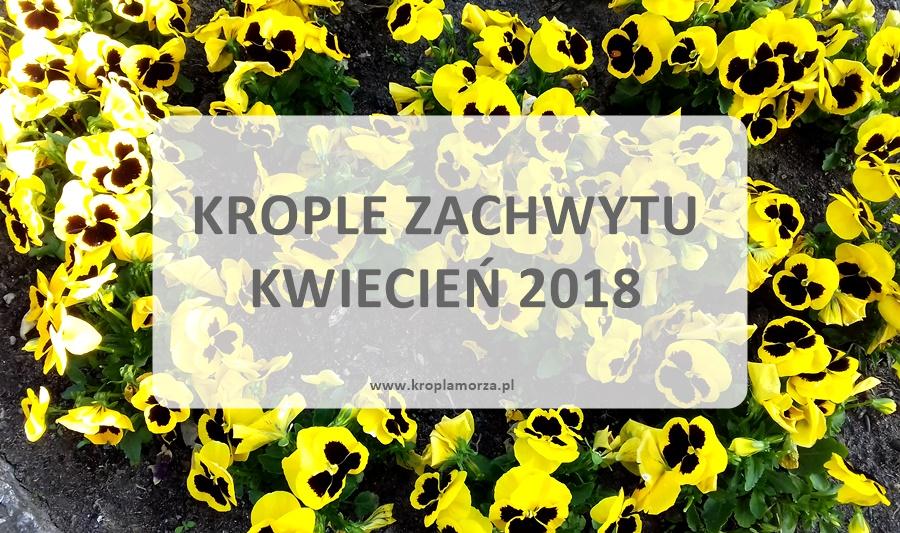 krople zachwytu kwiecień 2018