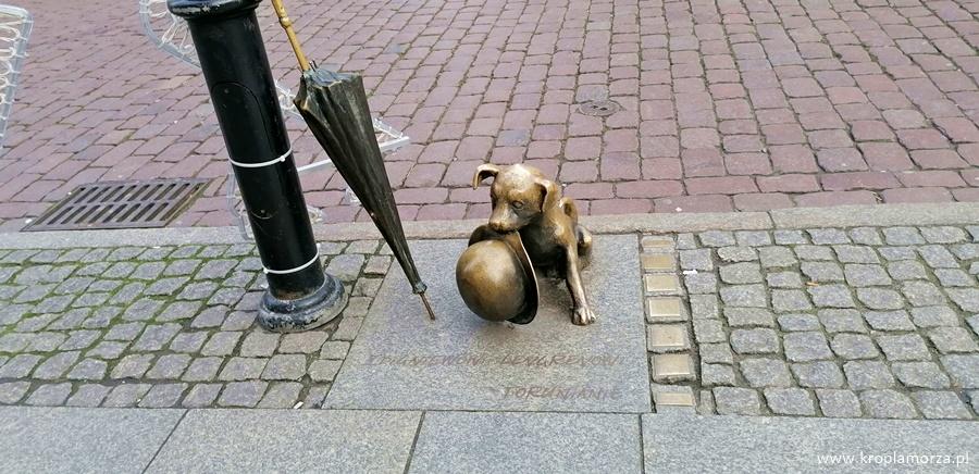 pomnik-psa-filusia-torun