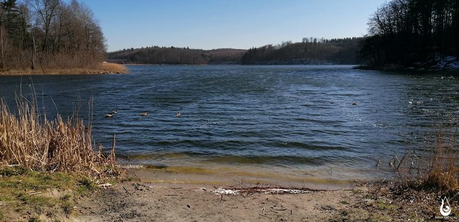 jezioro-wiosenny-spacer